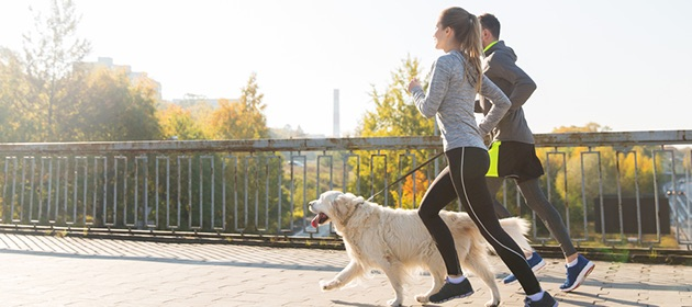 Excising With Your Dog